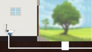 Toilet-Backflow-Illustration1080-2